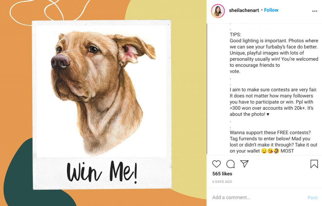 Sheila Chen explains how winners will emerge in her Instagram contest.